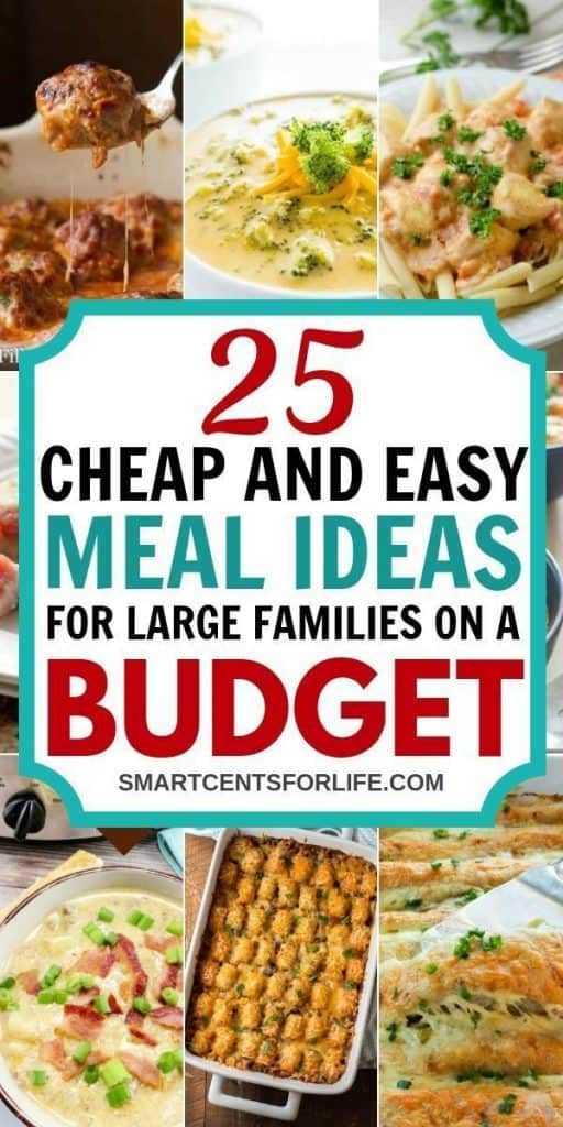 25 Cheap and easy meal ideas for large families on a budget - Looking for some cheap dinner ideas? Here is a complete list of 25 delicious, cheap and easy dinner recipes! Quick and easy meal ideas perfect to feed your whole family on a budget!
