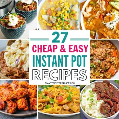 27 Cheap and Easy Instant Pot Recipes You have to Try!